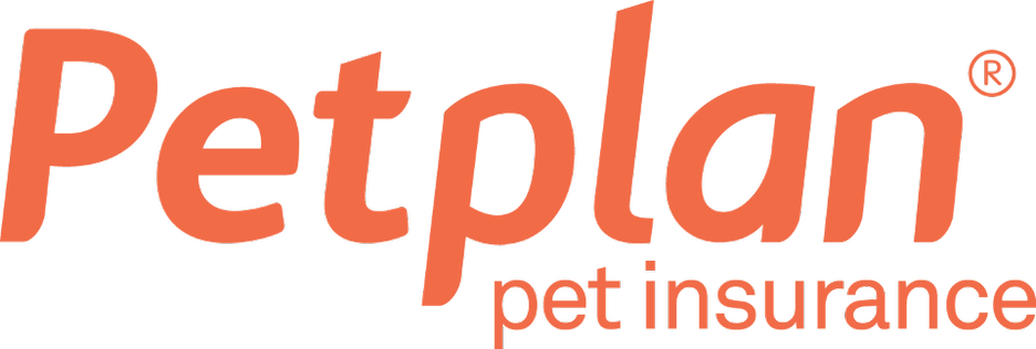 Petplan Pet Insurance Information Everything You Need To Know